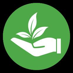 สาขาวิชาเทคโนโลยีการผลิตพืช